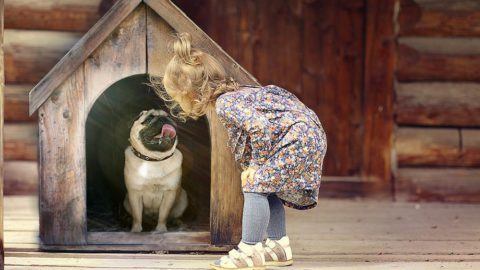 A girl standing in front of a Dog house