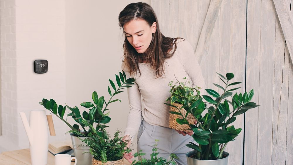 A woman using Cielo Breez to manage ideal humidity for plants
