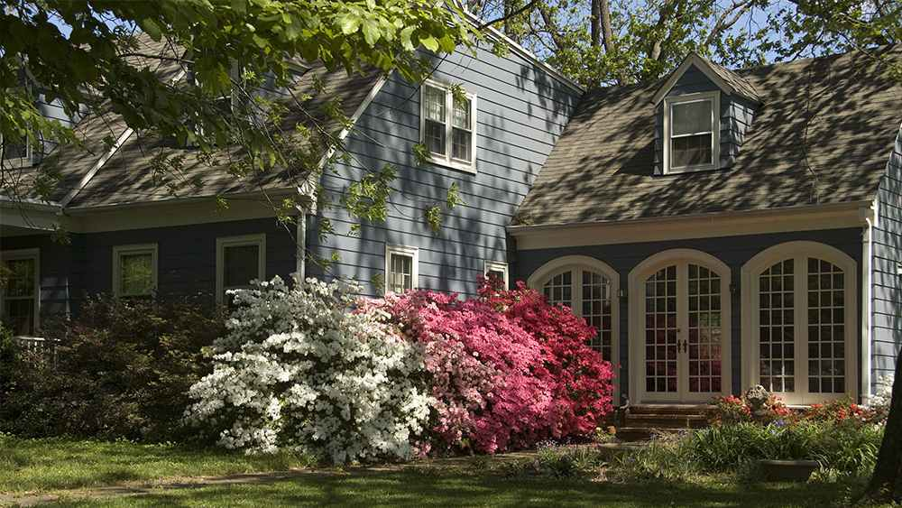 Landscaping helps to keep your house cool in summer
